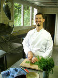 szef kuchni przecinania estragon zdjęcia royalty free