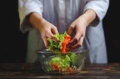 Szef kuchni przygotowywa sałatki warzywa obraz stock