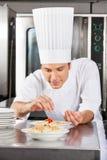Szef kuchni Sumujące pikantność naczynie fotografia royalty free