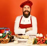 Szef kuchni z pikantność, warzywami i ciastem na stole, Cook z rozochoconą twarzą w Burgundy jednolitych pobliskich składnikach Obraz Stock