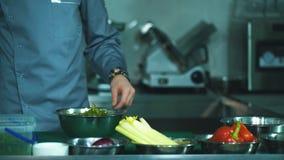 Szefa kuchni kulinarny karmowy rozcięcie przygotowywa ręk narządzania nożowych warzywa zbiory