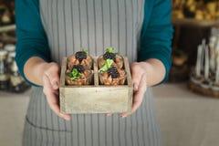 Szefa kuchni mienia czekoladowy deser z czernicą zdjęcie stock