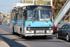 Szeged公共汽车 免版税图库摄影