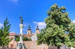 Szekesfehervar Oude Stad, Hongarije Royalty-vrije Stock Foto's