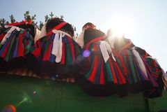 Szekler girls on the chariot royalty free stock images