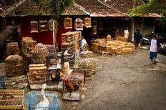 Szene der Vogelmärkte von Malang, Indonesien Lizenzfreies Stockfoto