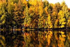 Szene des Herbstes Lizenzfreies Stockbild