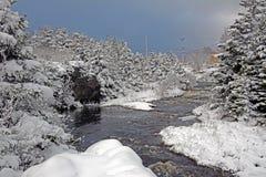Szene des verschneiten Winters entlang großem Fluss, Neufundland, Kanada Lizenzfreie Stockfotografie