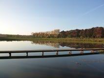 Szene eines Waldes mit Teich und des Weges über dem Wasser Lizenzfreie Stockfotografie