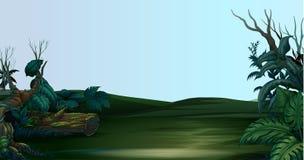 Szene mit grünem Feld und Busch Stockbilder