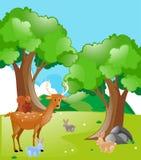 Szene mit Tieren im Park Lizenzfreie Stockfotos
