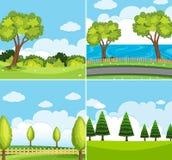Szene mit vier Hintergründen mit grünen Bäumen Lizenzfreie Stockfotografie
