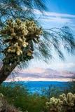 Szenen an Lake Mead Nevada Arizona stateline stockfoto