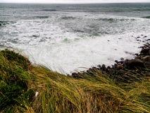 Szenen von Tarnaki-Strand, Nordinsel, Neuseeland Stockfotos