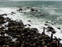 Szenen von Tarnaki-Strand, Nordinsel, Neuseeland Lizenzfreies Stockfoto
