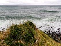 Szenen von Tarnaki-Strand, Nordinsel, Neuseeland Lizenzfreie Stockbilder