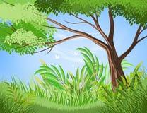 Szenenvektor des Baums und des üppigen Laubs Stockfoto