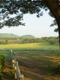 Szenisch von den Hügeln und von der Weide. Lizenzfreies Stockbild
