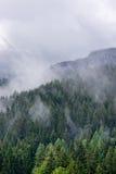 Szenische alpine Landschaft mit Koniferenwald Lizenzfreie Stockfotos