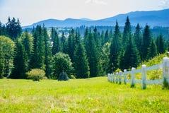 Szenische Ansicht der Berge Karpaten, Ukraine lizenzfreie stockfotos
