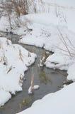 Nebenfluss in der schneebedeckten Landschaft Stockbilder