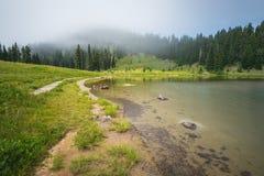 Szenische Ansicht des Waldes, der Wiese und des Sees mit Nebel am Tag im Tipzoo See, mt regnerischer, Washington, USA lizenzfreie stockfotos