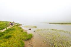 Szenische Ansicht des Waldes, der Wiese und des Sees mit Nebel am Tag im Tipzoo See, mt regnerischer, Washington, USA Stockbild