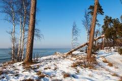 Szenische Ansicht des Winters Stockbild