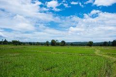 Szenische Ansicht-Landschaft gegen Himmel stockfotos