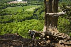 Szenische Ansicht von einer Klippe auf Talcott-Berg in Connecticut lizenzfreies stockfoto
