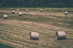 Szenische Ansicht von Grasrollen Lizenzfreie Stockfotografie