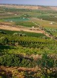 Szenische Ansicht von Sizilien-Ackerland voll der Olivenbäume und der Traubenweinberge Stockbild