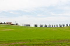 Szenische Ansicht von Toskana-Landschaft mit grünen Hügeln und Zypressenbäumen, Italien Stockbild
