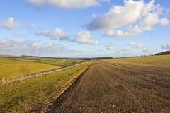 Szenische bebaute Felder Lizenzfreies Stockbild