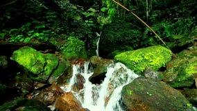 Szenische Beschaffenheit des schönen Wasserfalls stock video