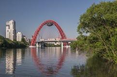Szenische Brücke im silbernen Wald Stockfotos