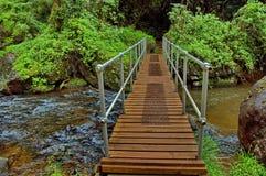 Szenische Brücke unterhalb des einzigen Nebenflussfalles in Südafrika Lizenzfreie Stockfotografie