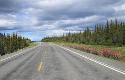 Szenische Datenbahn in Alaska Lizenzfreie Stockfotos