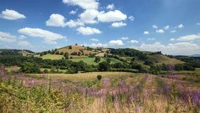Szenische Hügel von Waliser-Landschaft am Sommer stock video
