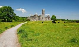 Szenische irische alte Kircheabtei ruiniert Landschaft Stockbilder