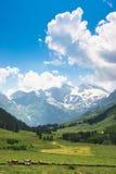 Szenische Landschaft in den Alpen in Salzburg, Österreich Stockbilder
