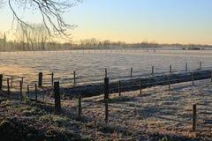 Szenische Landschaft in der Provinz Limburg, die Niederlande Stockbild