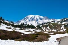 Szenische Landschaft des Mount Rainier stockbilder