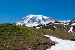 Szenische Landschaft des Mount Rainier stockbild