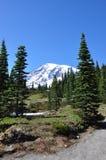 Szenische Landschaft des Mount Rainier stockfoto
