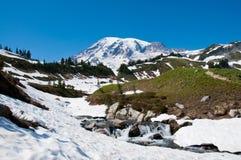 Szenische Landschaft des Mount Rainier mit Kaskaden lizenzfreie stockbilder