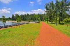 Szenische Landschaft eines Naturgehwegs bei Punggol Stockbild