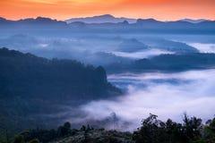 Szenische Landschaft im nebeligen Tal an der Dämmerung Stockfotografie
