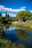 Szenische Landschaft mit den Flussbäumen und blauem Himmel, strunjan, Slowenien Stockfotografie