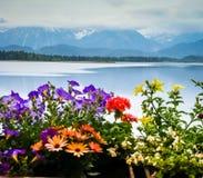 Szenische Landschaft mit See und Blumen im Bayern Stockfotos